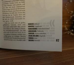 Buch der Schurken - 05 - couchpirat.de