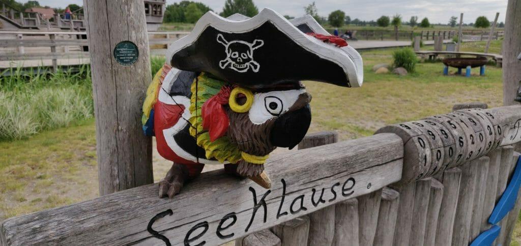 Papageien sind wichtig für Piraten